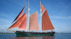 Savor The Summer With A Wine And Cheese Sail In Rhode Island