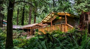 Stay In This Cozy Little Creekside Cabin In Washington For Less Than $150 Per Night