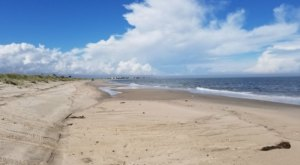 Beach Plum Island Is One Of The Most Underrated Summer Destinations In Delaware