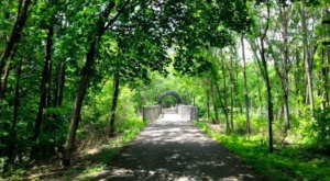 Cardinal Greenway Is A Bike Friendly Path In Indiana That Will Lead You Through Natural Beauty