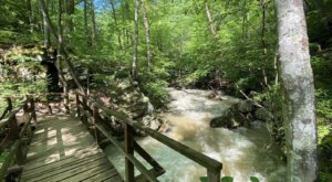 This 1-Mile Hike In Virginia Is Full Of Jaw-Dropping Natural Pools