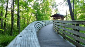 This Easy 2.3-Mile Trail Network In Maine Features A Boardwalk, Bridge And Wacky Spiral Stairs