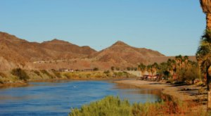 Walk Along The Riverside For Stunning Mojave Desert Views At Colorado River Heritage Park In Nevada