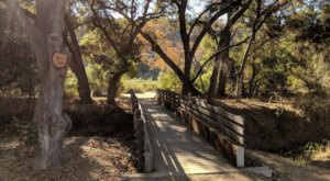 Hike Through A Lush Outdoor Paradise Overflowing With Trails At Buena Vista Park Pond And Open Space In Southern California