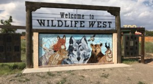 There's A Wildlife Park In New Mexico That's Perfect For A Family Day Trip