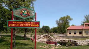 Walk Underneath Tigers, See Rare Animals, And More At The Roosevelt Park Zoo In North Dakota