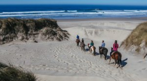 Walk Through Waves And Dunes On Horseback At Florence's Beautiful Beach In Oregon