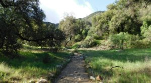 Packed With 12 Miles Of Scenic Trails, Placerita Canyon State Park In Southern California Is A Heavenly Outdoor Oasis