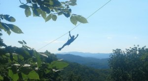 Soar Above The Trees On The Longest, Fastest, And Tallest Zip Line In Virginia At Hungry Mother Adventure Park