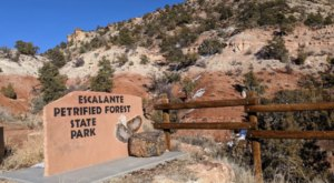 Visit Utah's Escalante Petrified Forest State Park, But Avoid The Ancient Curse