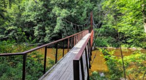 Walk Over A Gorgeous Bridge On The Bee Brook Loop, An Easy 2-Mile Hike In Connecticut
