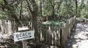 Follow A Sandy Path To The Waterfront When You Visit Springer's Point Nature Preserve In North Carolina