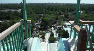 Take A Wet And Wild Ride Down The Tallest Waterslide In Florida At Blizzard Beach