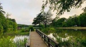 Tyler State Park In Texas Is So Well-Hidden, It Feels Like One Of The State's Best Kept Secrets