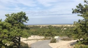 For Views Of Stunning Coastal Sand Dunes In Massachusetts, Take Province Lands Bike Trail