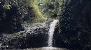 Maunawili Falls Trail Is A 3-Mile Hike In Hawaii That Leads You To A Pristine Swimming Hole
