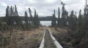 Hike This Gently Winding Trail To Marsh Lake In Alaska