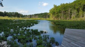 Anyone Can Take A Hike On The Short But Sweet All Persons Trail At Broadmoor Wildlife Sanctuary In Massachusetts