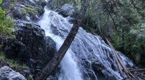 This Easy 2.5-Mile Trail Leads To Pine Creek Falls, One Of Montana's Most Underrated Waterfalls