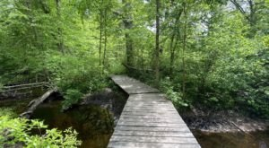 A Short But Beautiful Hike, Sin and Flesh Brook Trail Leads To A Little-Known Brook In Rhode Island