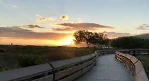 Kealia Pond Boardwalk Is A Trail In Hawaii That Leads To A Wildlife Refuge