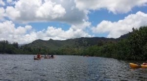 Explore A New Side Of Kauai When You Kayak To Fern Grotto, A Special Water Trail In Hawaii