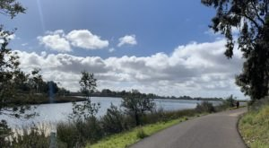 The Easy Lakeside Trail In Southern California, Lake Miramar Trail, That Will Lead You Through Absolute Perfection