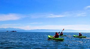 Kayak Out To Wild Horse Island In Montana To See An Island Filled With Wildlife