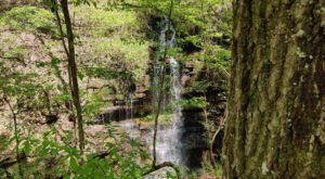 A Short But Beautiful Hike, Lost Sink Trail, Leads To A Little-Known Waterfall In Alabama