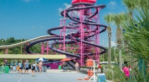 Take A Wet And Wild Ride Down The Tallest Waterslide In South Carolina At Myrtle Waves Water Park