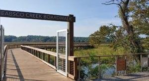 Hiking The Neabsco Creek Boardwalk Trail In Virginia Is Like Entering Another World