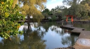 Liliuokalani Park And Gardens In Hawaii Has The Most Incredible Outdoor Fishponds