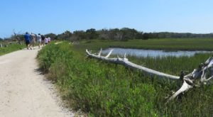 Follow A Sandy Path To The Waterfront When You Visit Botany Bay In South Carolina