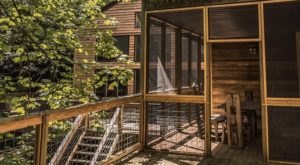 Spend The Night In A Remodeled Forest Cabin In Kentucky Just Steps Away From Fishing And Treetop Adventures
