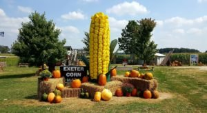 Voted One Of The Best Corn Mazes In The Country, Exeter Corn Maze Is a Must-Visit Fall Destination In Missouri