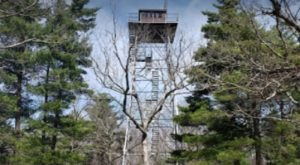 Climb 72 Feet To The Top Of Taum Sauk Lookout Tower In Missouri And You Can See The Ozarks