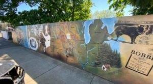 Oregonians Love The Heartwarming Story Of Bobbie The Wonder Dog