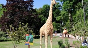 BrickLive Animal Paradise At Michigan's John Ball Zoo Features Over 40 Life-Sized Sculptures Made Of Mini Bricks