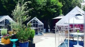 Dine Inside A Tiny Greenhouse At This Magical Outdoor Garden Restaurant, Lady Byrd Cafe, In Southern California