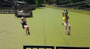 The Zipline At Gators And Friends In Louisiana Is The Longest, Steepest, And Highest In The State