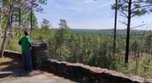 You'll Forget You're In Louisiana On The Longleaf Vista Trail, An Easy Hike That Leads Through An Enchanted Forest