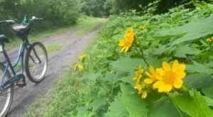 West Virginia's Mon River Trail System Named National Rail-Trail Hall Of Fame Pick For 2020