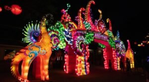You Can Drive Or Walk Through The Mesmerizing Asian Lantern Festival In Ohio This Year