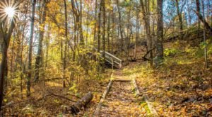 Beaver Creek Reserve In Wisconsin Is So Hidden Most Locals Don't Even Know About It