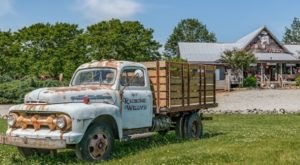 Hit The Road To Redbone Willys Trading Company, An Eclectic General Store In The Middle Of Nowhere In North Carolina