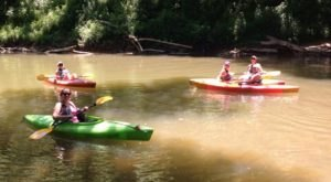 Spend An Afternoon Taking A Delightful Kayak Paddling Tour Through Red River Gorge In Kentucky This Summer