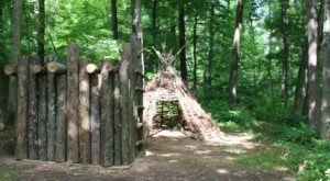 Your Kids Will Love The Nature Playscape, Feeding Geese And Hiking Trails At The Wilderness Center In Ohio