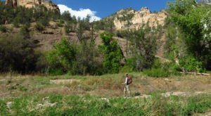 This Picturesque River Hike In The Gila Wilderness Was Just Named One Of The Best In New Mexico