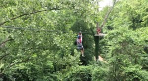 The Zipline At Zip Line USA In Missouri Is The Longest, Highest, and Largest In The State