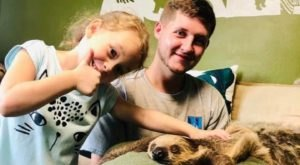 Throughout The Month Of September, You Can Book A Sloth Encounter At This Mississippi Park For Just $35